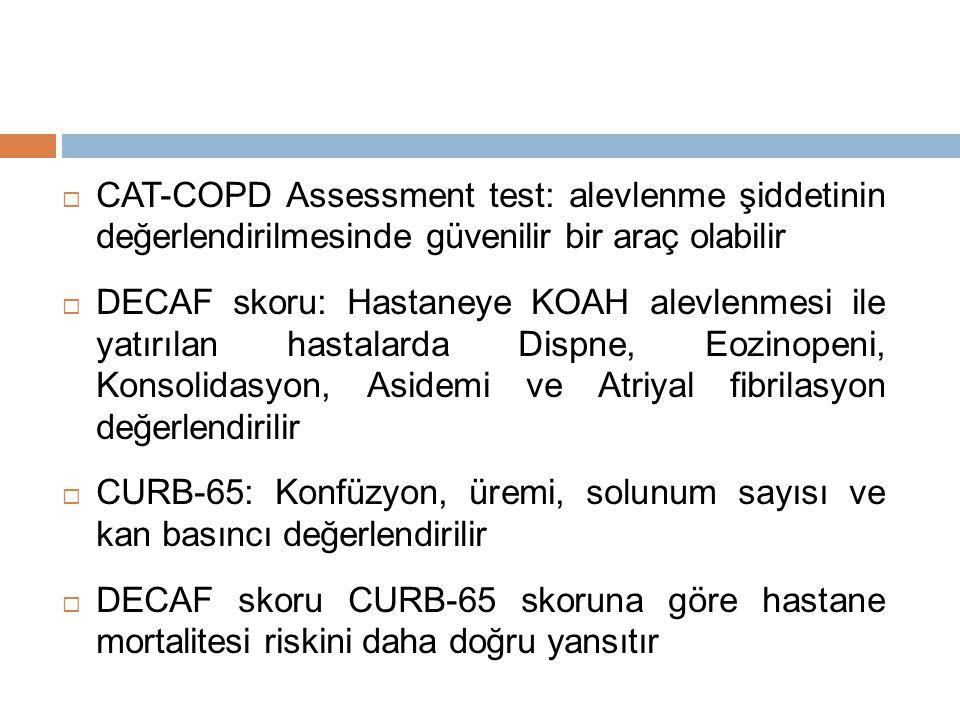 CAT-COPD Assessment test: alevlenme şiddetinin değerlendirilmesinde güvenilir bir araç olabilir