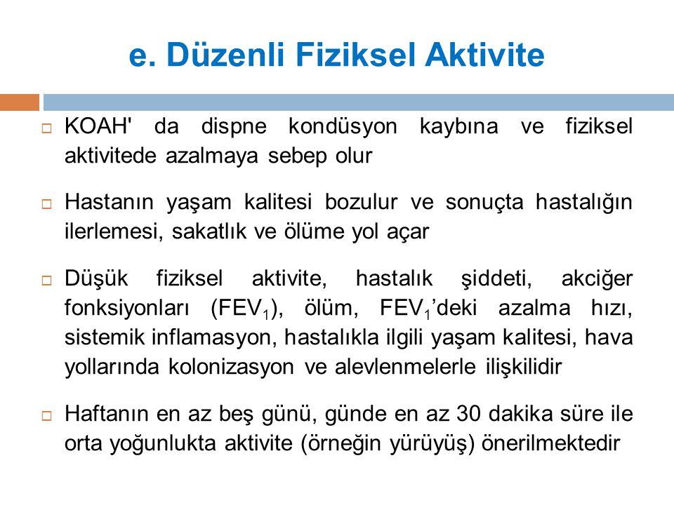 e. Düzenli Fiziksel Aktivite