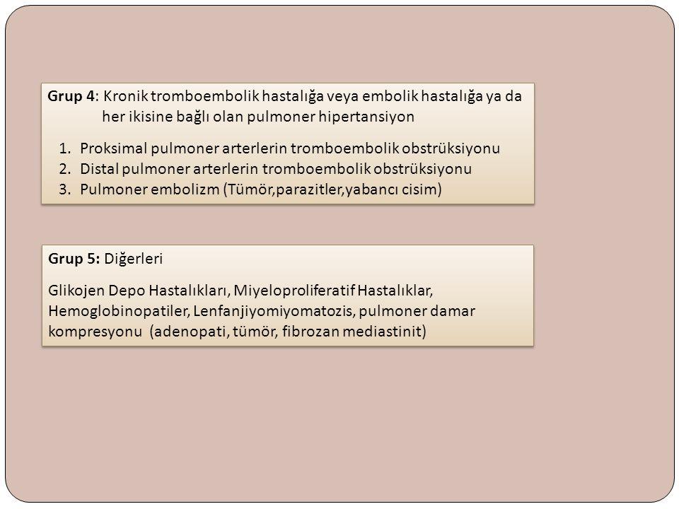 Grup 4: Kronik tromboembolik hastalığa veya embolik hastalığa ya da