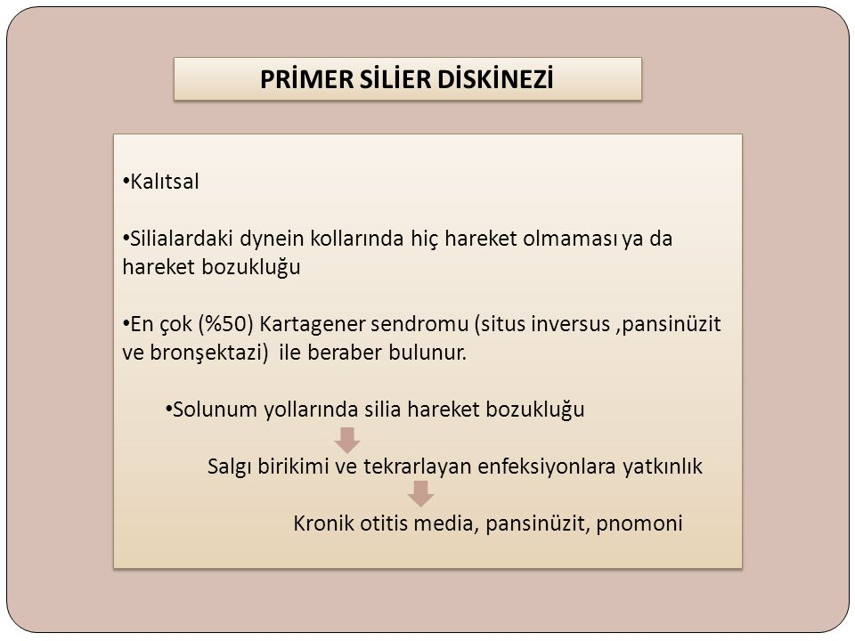 PRİMER SİLİER DİSKİNEZİ
