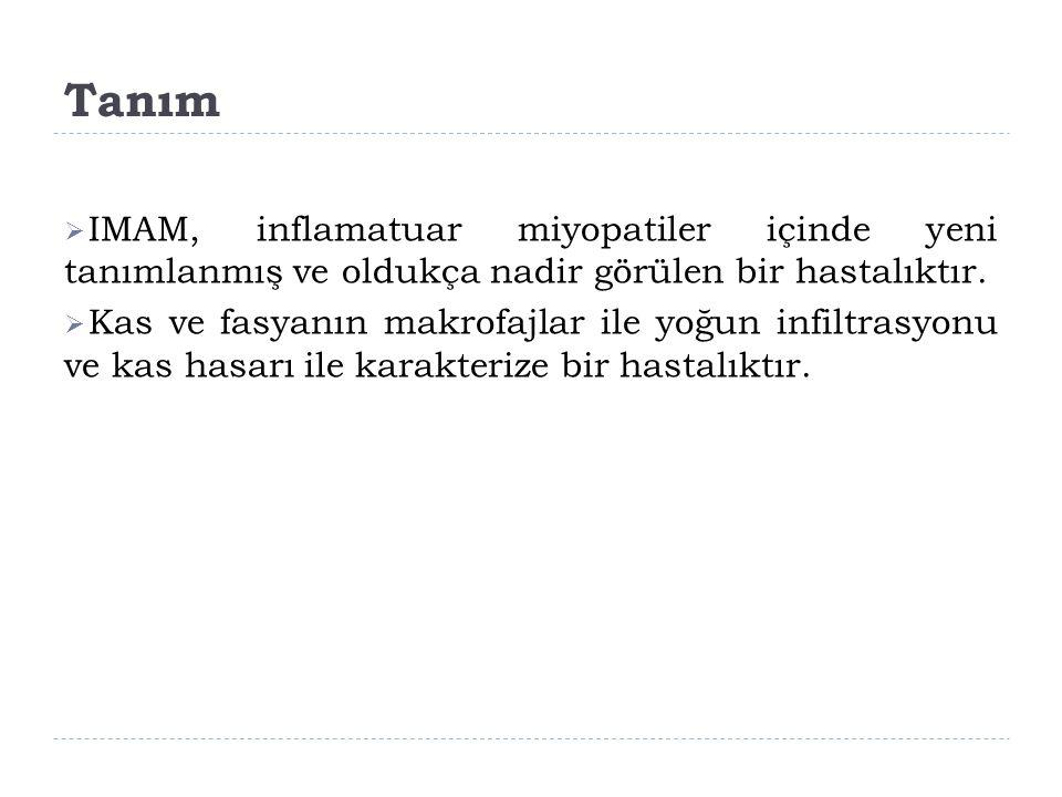 Tanım IMAM, inflamatuar miyopatiler içinde yeni tanımlanmış ve oldukça nadir görülen bir hastalıktır.