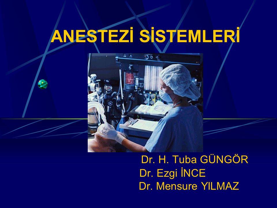 Dr. H. Tuba GÜNGÖR Dr. Ezgi İNCE Dr. Mensure YILMAZ