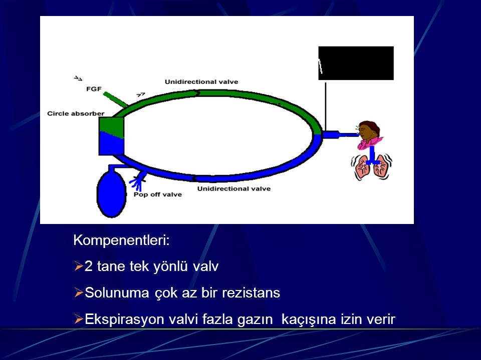 Kompenentleri: 2 tane tek yönlü valv. Solunuma çok az bir rezistans.