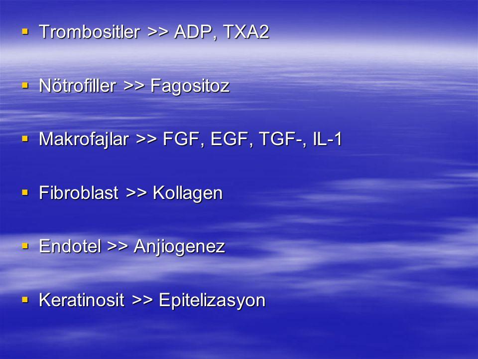 Trombositler >> ADP, TXA2