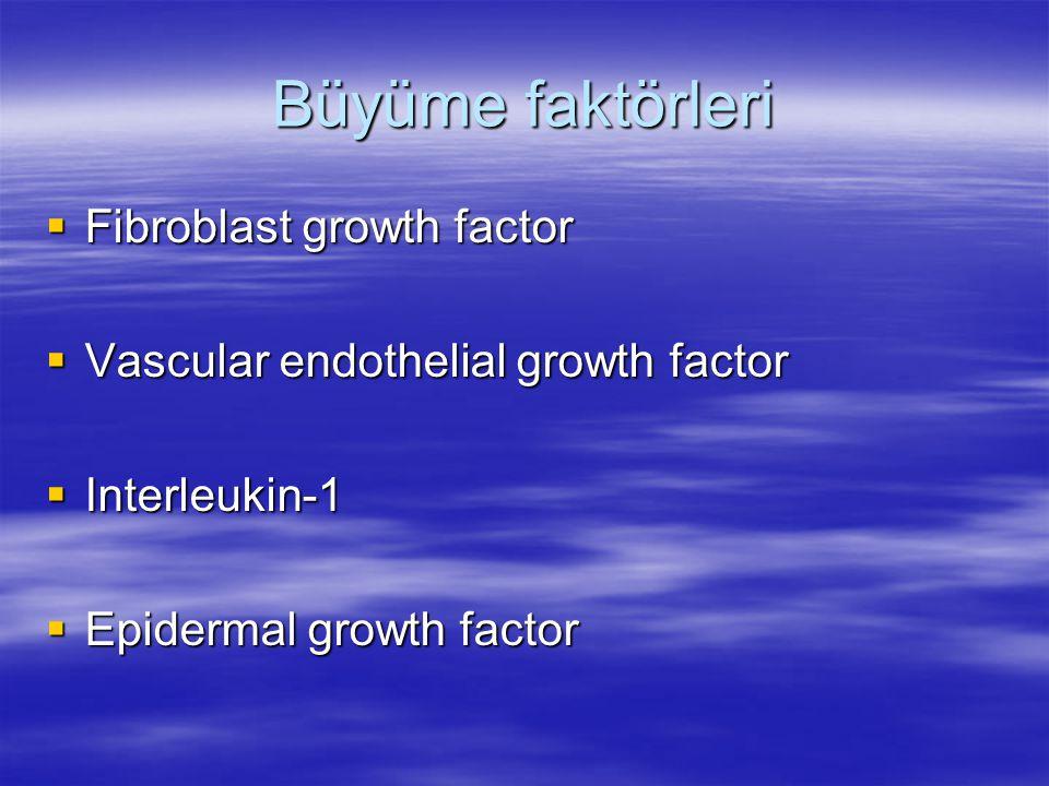 Büyüme faktörleri Fibroblast growth factor