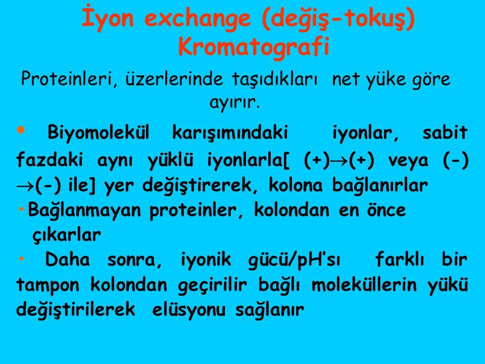 İyon exchange (değiş-tokuş)