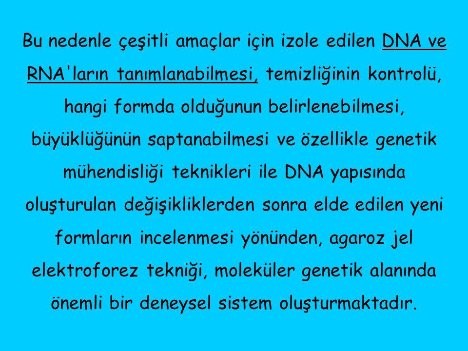 Bu nedenle çeşitli amaçlar için izole edilen DNA ve RNA ların tanımlanabilmesi, temizliğinin kontrolü, hangi formda olduğunun belirlenebilmesi, büyüklüğünün saptanabilmesi ve özellikle genetik mühendisliği teknikleri ile DNA yapısında oluşturulan değişikliklerden sonra elde edilen yeni formların incelenmesi yönünden, agaroz jel elektroforez tekniği, moleküler genetik alanında önemli bir deneysel sistem oluşturmaktadır.