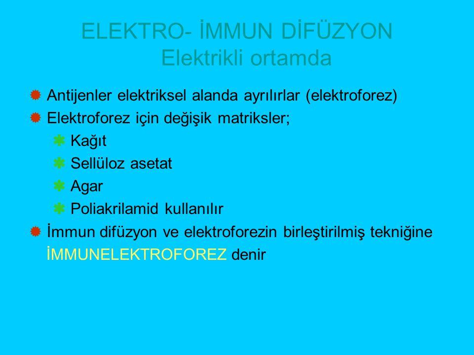ELEKTRO- İMMUN DİFÜZYON Elektrikli ortamda