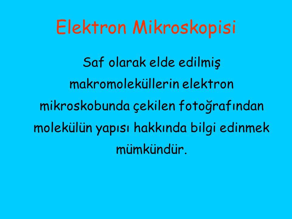 Elektron Mikroskopisi