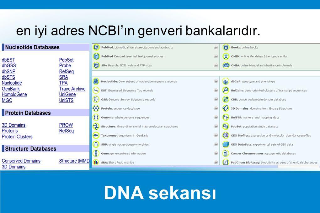 en iyi adres NCBI'ın genveri bankalarıdır.