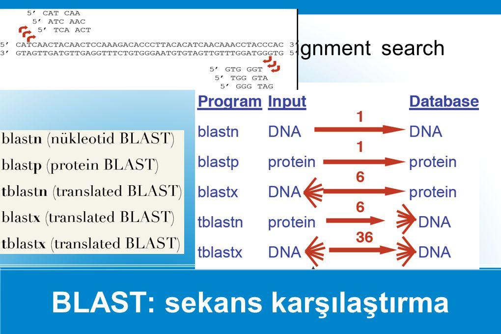 BLAST: sekans karşılaştırma