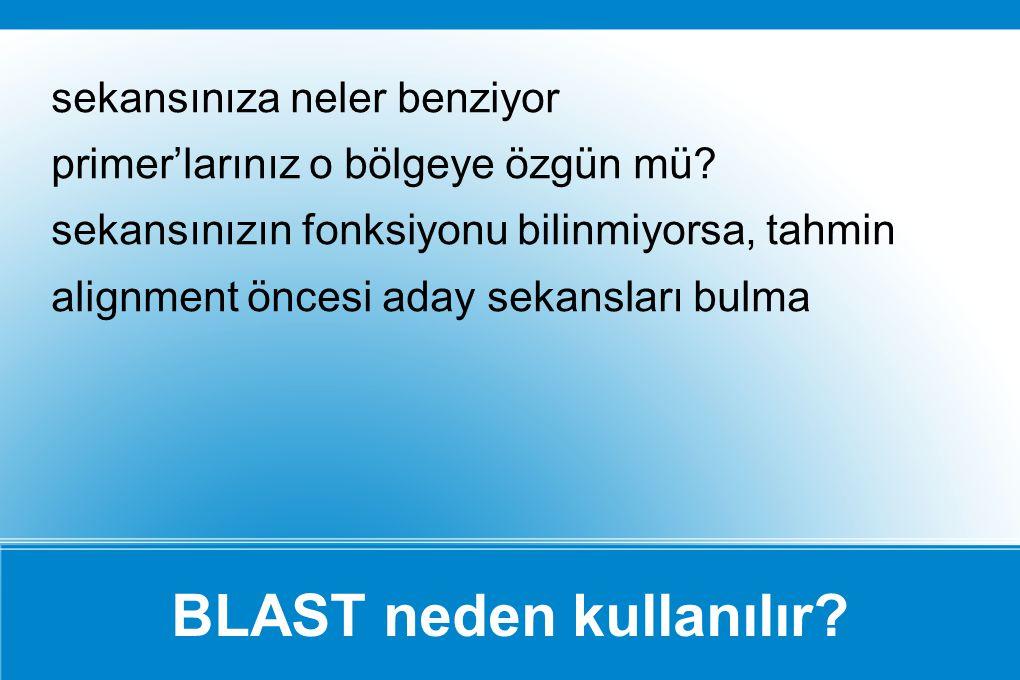 BLAST neden kullanılır