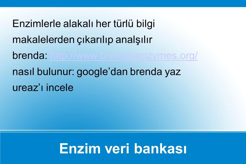 Enzimlerle alakalı her türlü bilgi makalelerden çıkarılıp analşılır brenda: http://www.brenda-enzymes.org/ nasıl bulunur: google'dan brenda yaz ureaz'ı incele