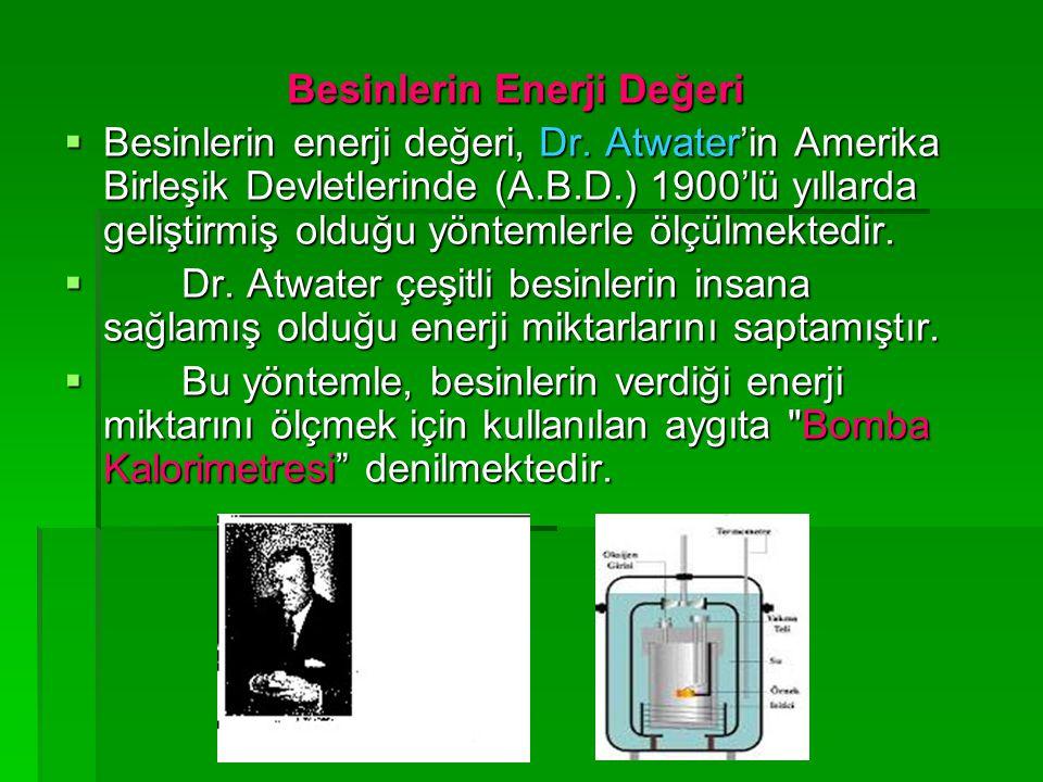 Besinlerin Enerji Değeri