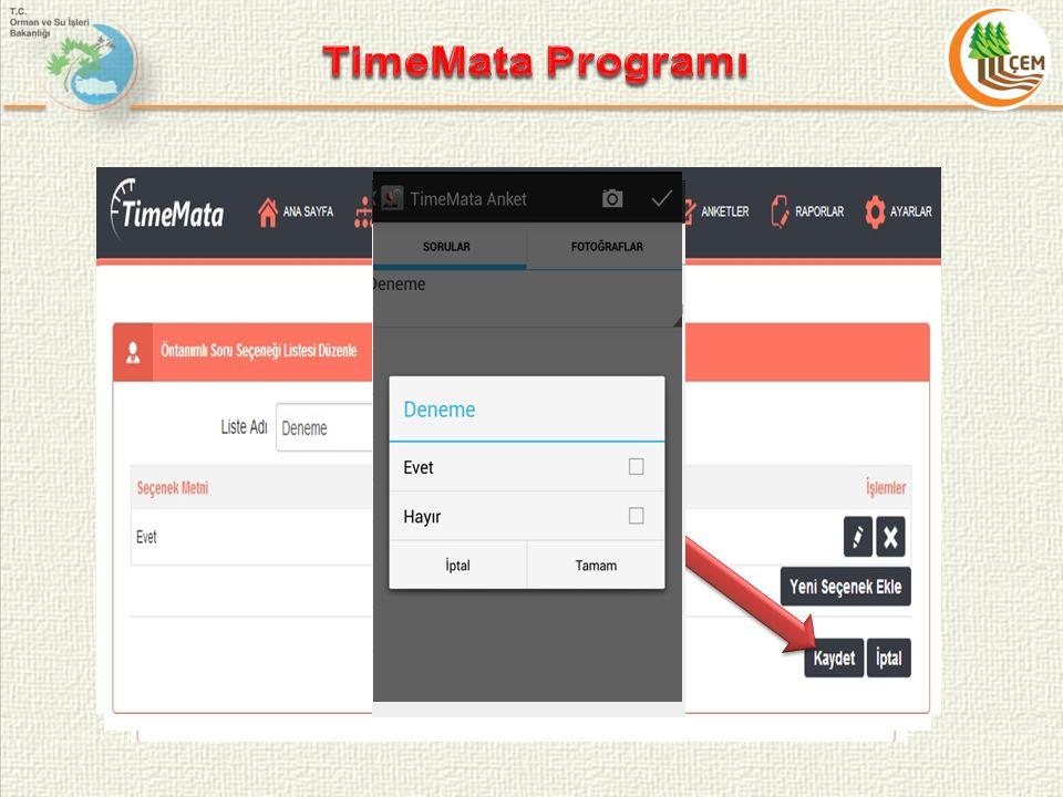 TimeMata Programı Düzenleme Butonu Silme Butonu Anket Listesi