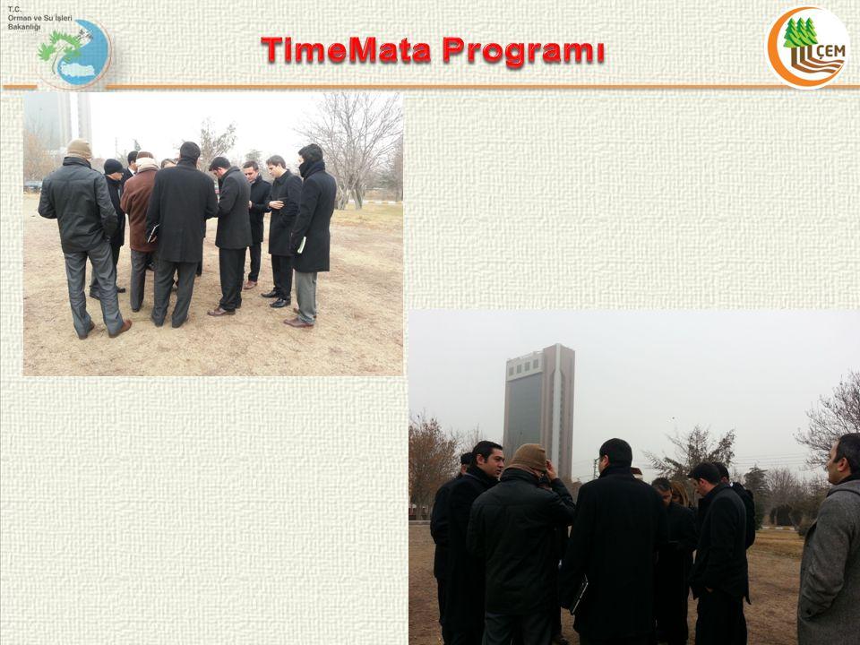 TimeMata Programı