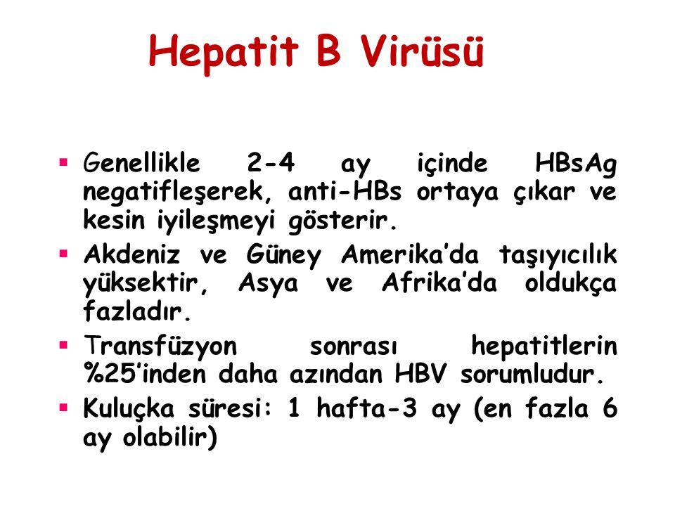 Hepatit B Virüsü Genellikle 2-4 ay içinde HBsAg negatifleşerek, anti-HBs ortaya çıkar ve kesin iyileşmeyi gösterir.