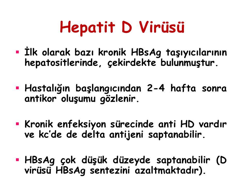 Hepatit D Virüsü İlk olarak bazı kronik HBsAg taşıyıcılarının hepatositlerinde, çekirdekte bulunmuştur.
