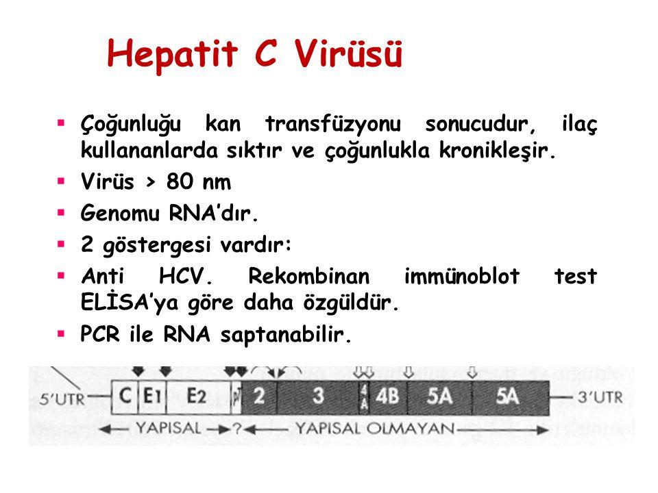 Hepatit C Virüsü Çoğunluğu kan transfüzyonu sonucudur, ilaç kullananlarda sıktır ve çoğunlukla kronikleşir.