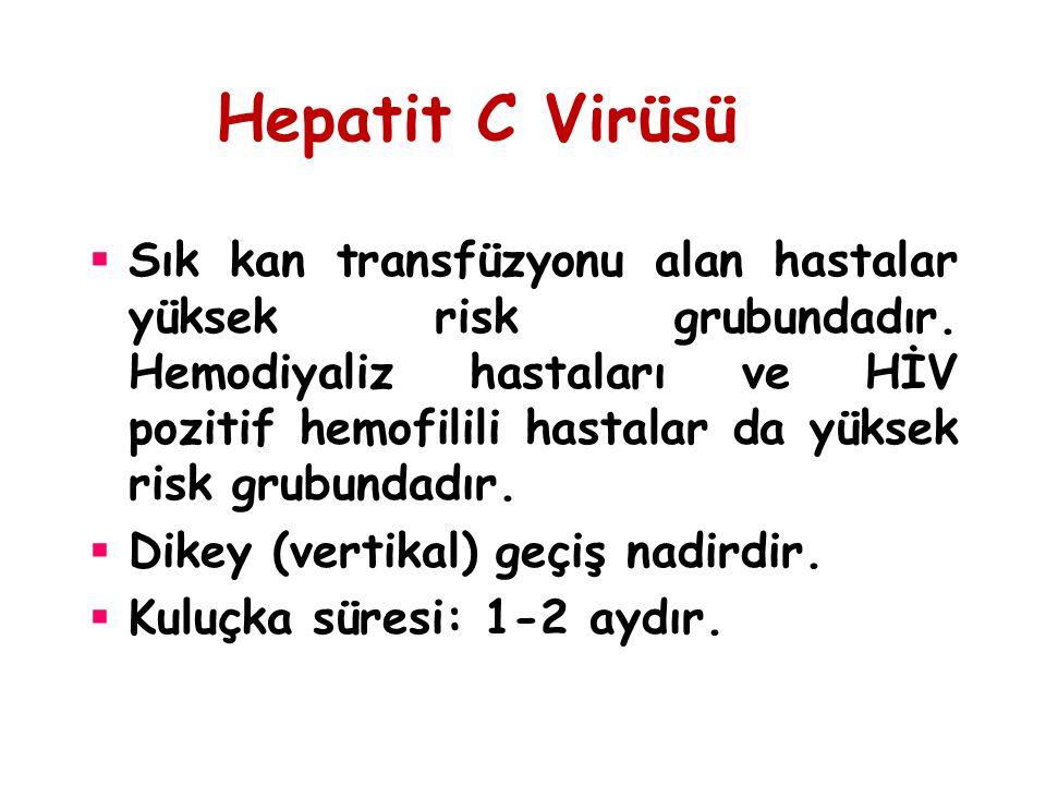 Hepatit C Virüsü