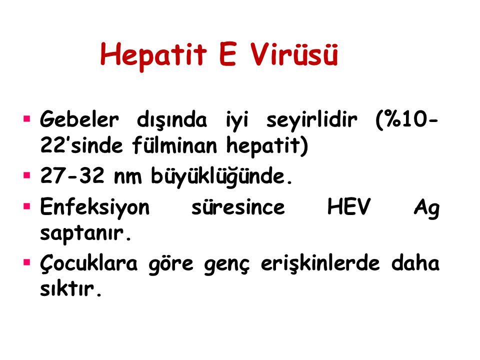 Hepatit E Virüsü Gebeler dışında iyi seyirlidir (%10-22'sinde fülminan hepatit) 27-32 nm büyüklüğünde.