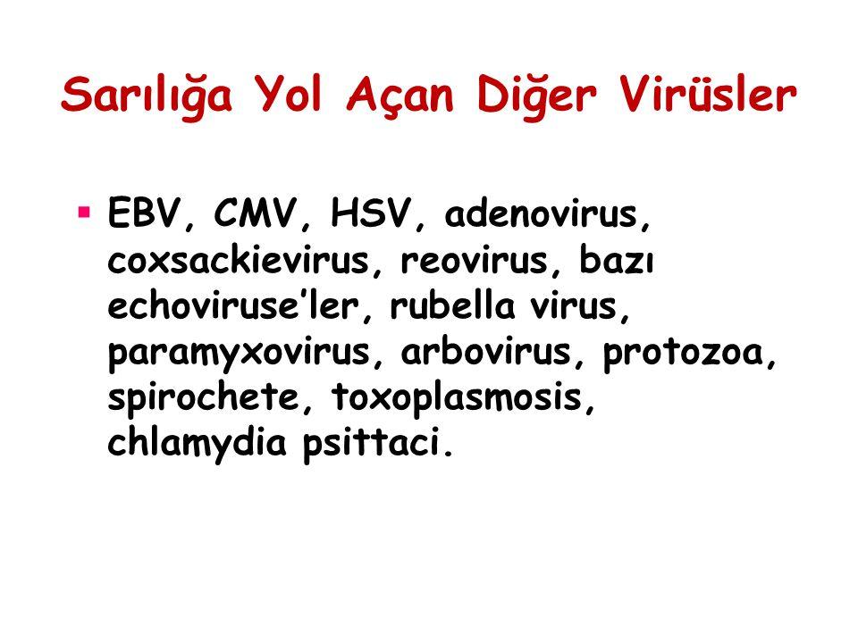 Sarılığa Yol Açan Diğer Virüsler