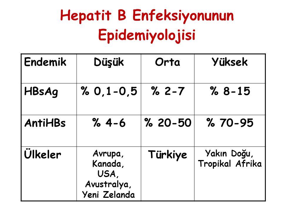 Hepatit B Enfeksiyonunun Epidemiyolojisi
