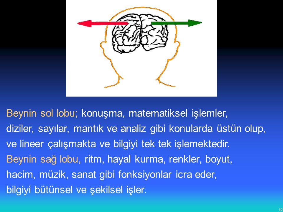 Beynin sol lobu; konuşma, matematiksel işlemler,