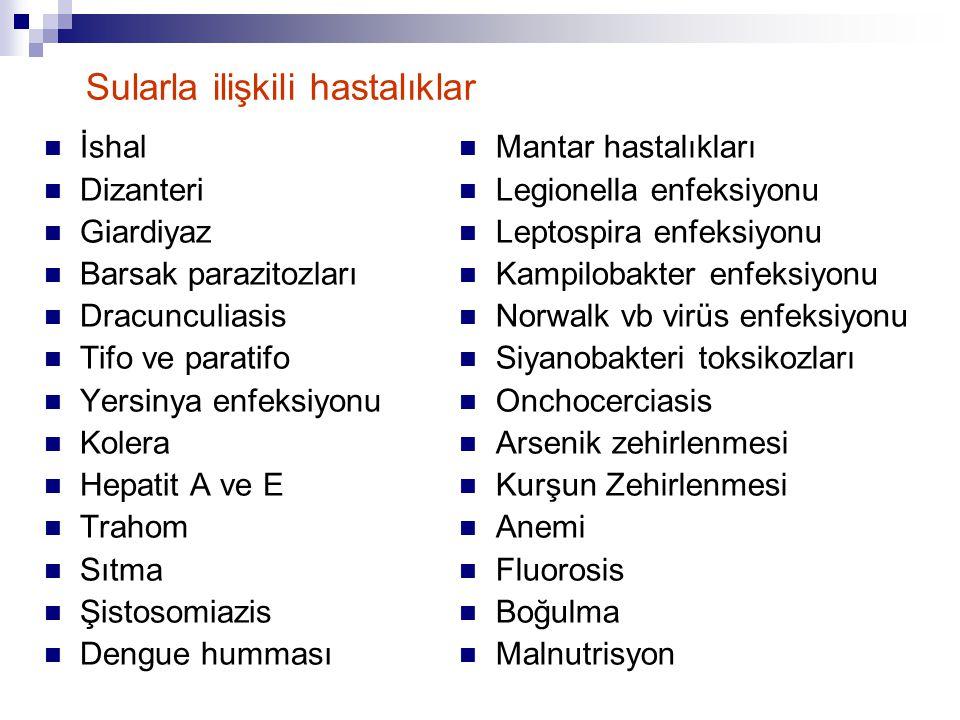 Sularla ilişkili hastalıklar