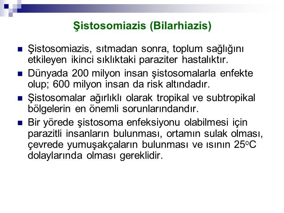 Şistosomiazis (Bilarhiazis)