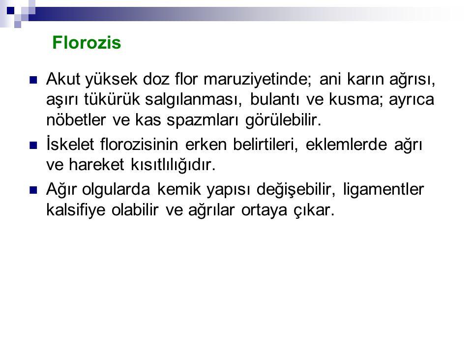 Florozis