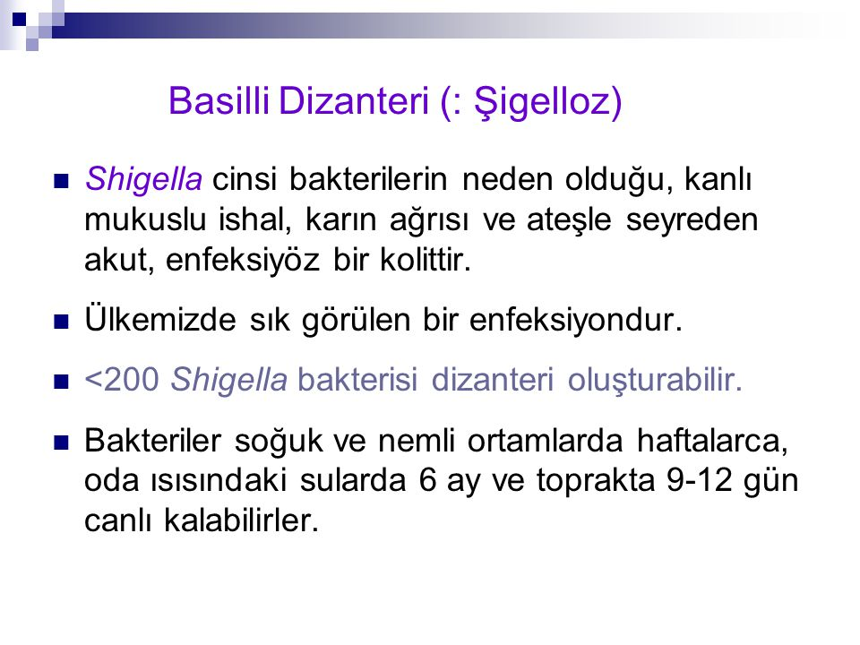 Basilli Dizanteri (: Şigelloz)