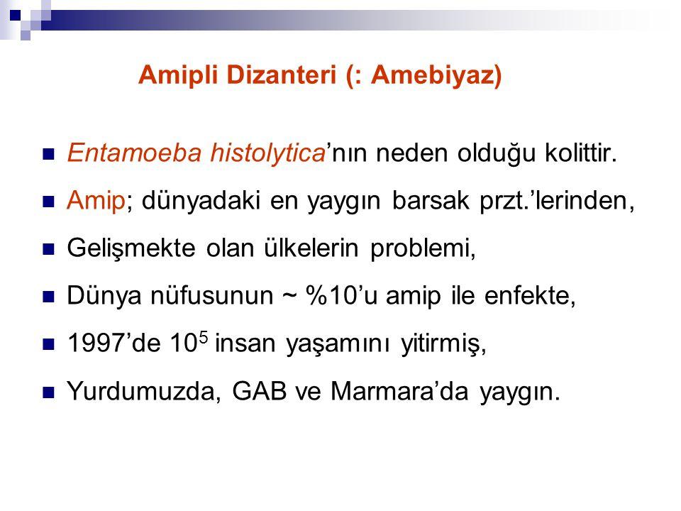 Amipli Dizanteri (: Amebiyaz)