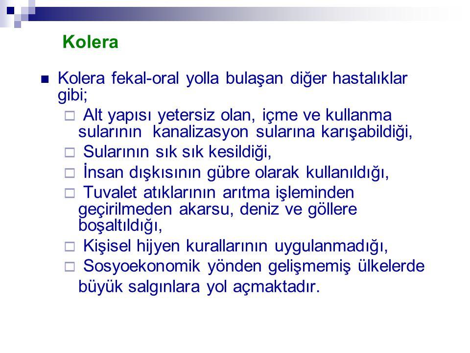 Kolera Kolera fekal-oral yolla bulaşan diğer hastalıklar gibi;