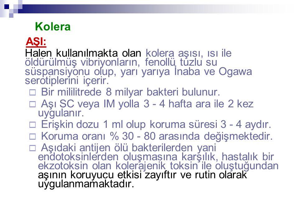 Kolera AŞI: