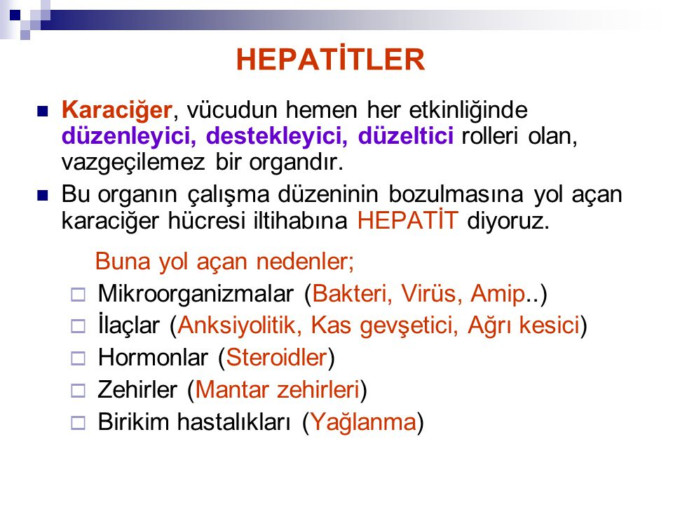 HEPATİTLER Karaciğer, vücudun hemen her etkinliğinde düzenleyici, destekleyici, düzeltici rolleri olan, vazgeçilemez bir organdır.