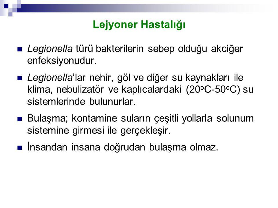 Lejyoner Hastalığı Legionella türü bakterilerin sebep olduğu akciğer enfeksiyonudur.
