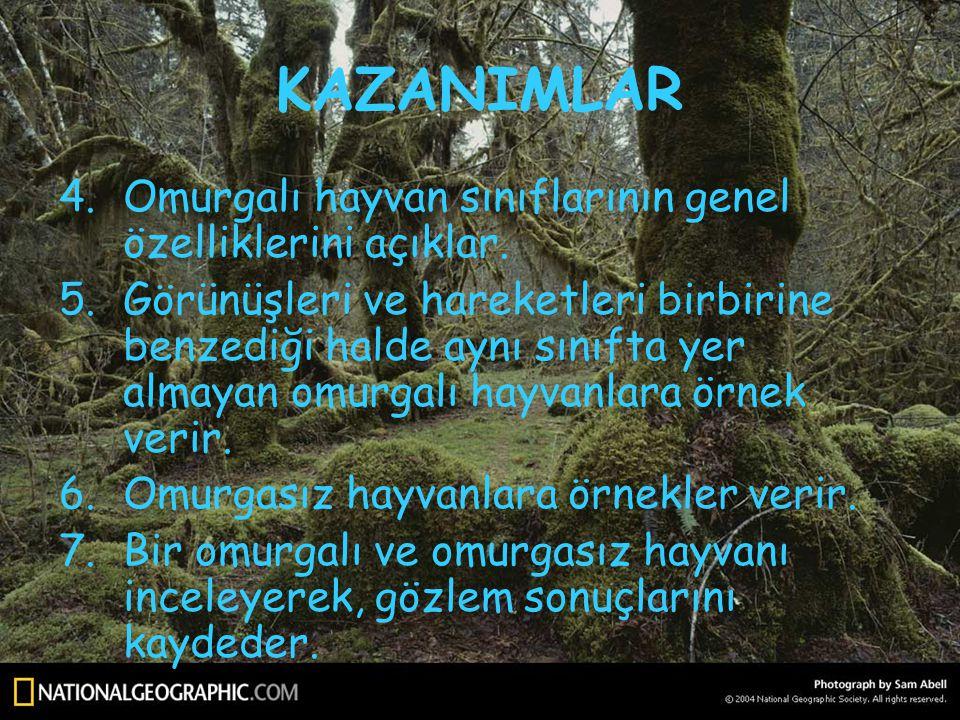 KAZANIMLAR Omurgalı hayvan sınıflarının genel özelliklerini açıklar.