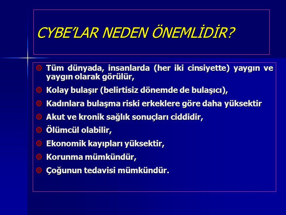 CYBE'LAR NEDEN ÖNEMLİDİR
