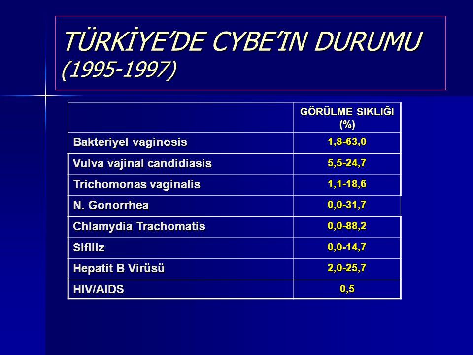 TÜRKİYE'DE CYBE'IN DURUMU (1995-1997)