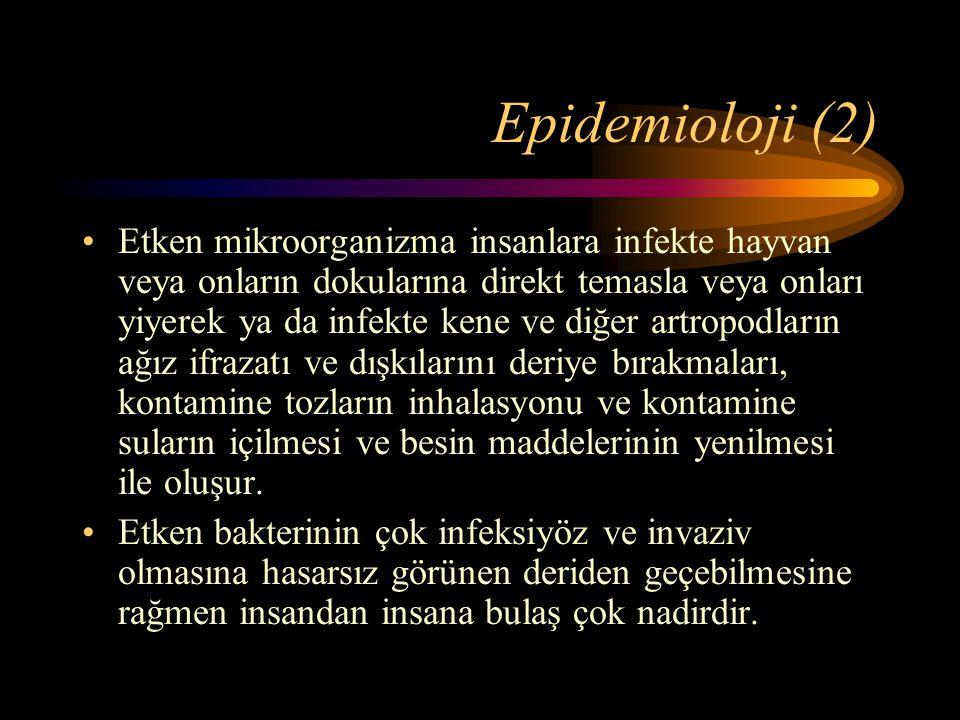 Epidemioloji (2)