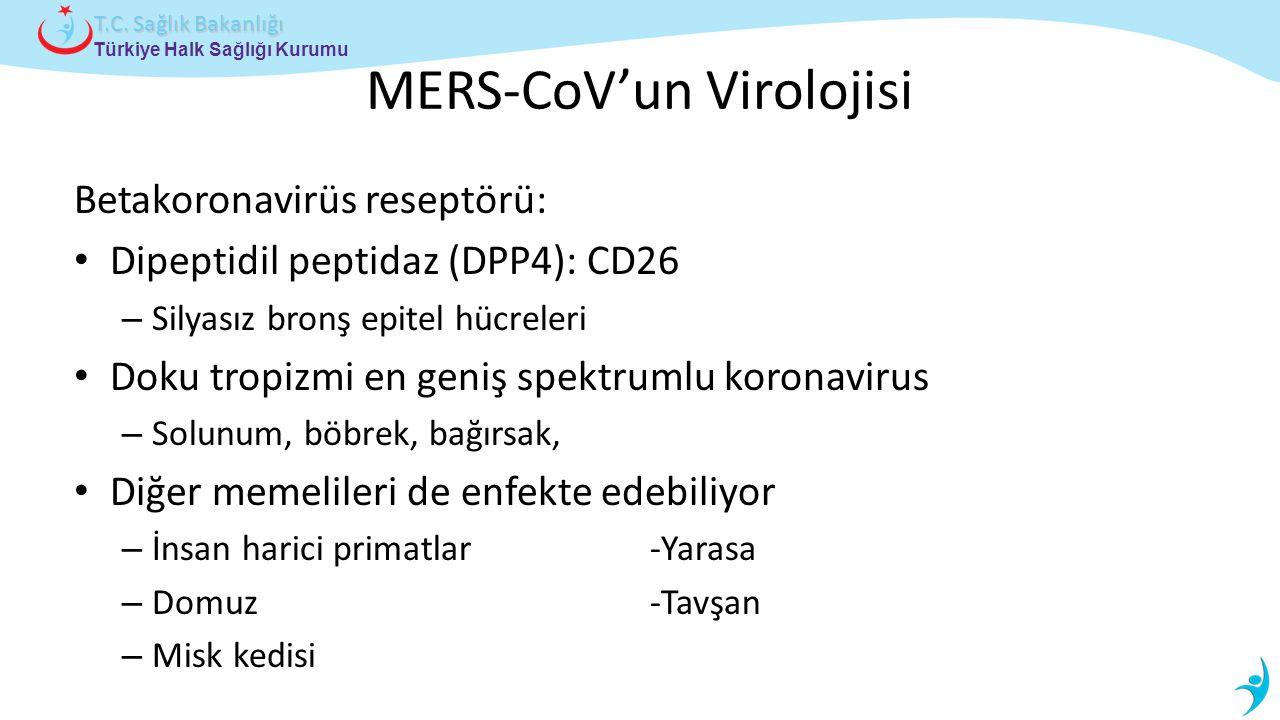 MERS-CoV'un Virolojisi