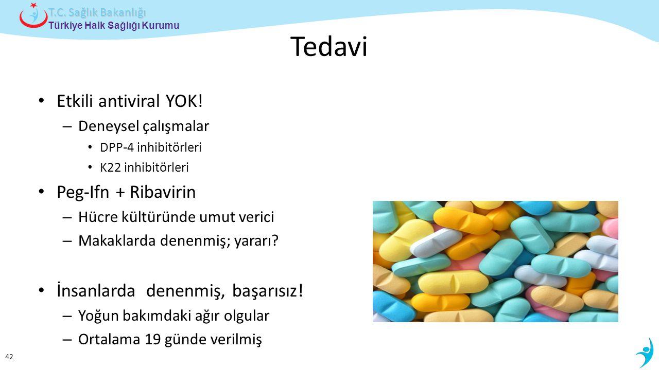 Tedavi Etkili antiviral YOK! Peg-Ifn + Ribavirin