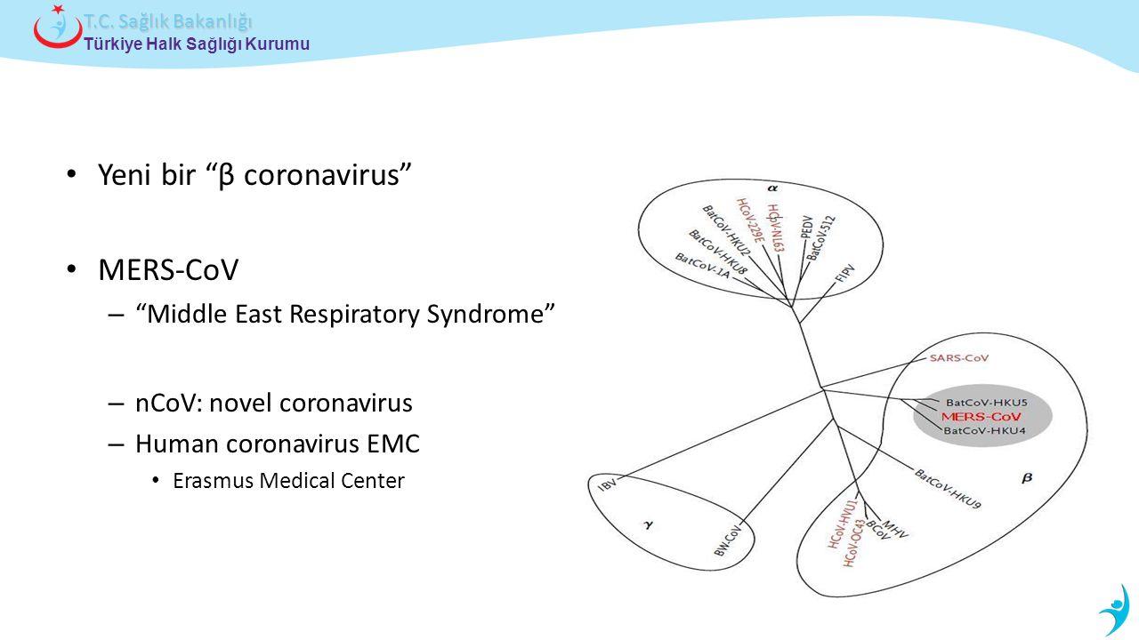 Yeni bir β coronavirus MERS-CoV