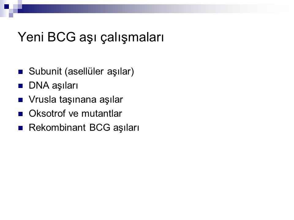Yeni BCG aşı çalışmaları