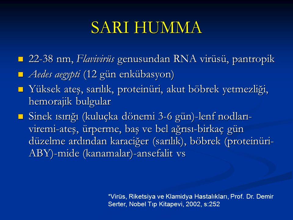 SARI HUMMA 22-38 nm, Flavivirüs genusundan RNA virüsü, pantropik