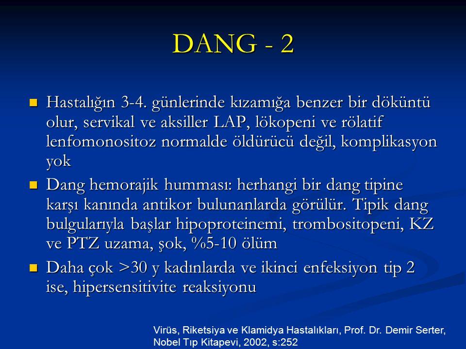 DANG - 2