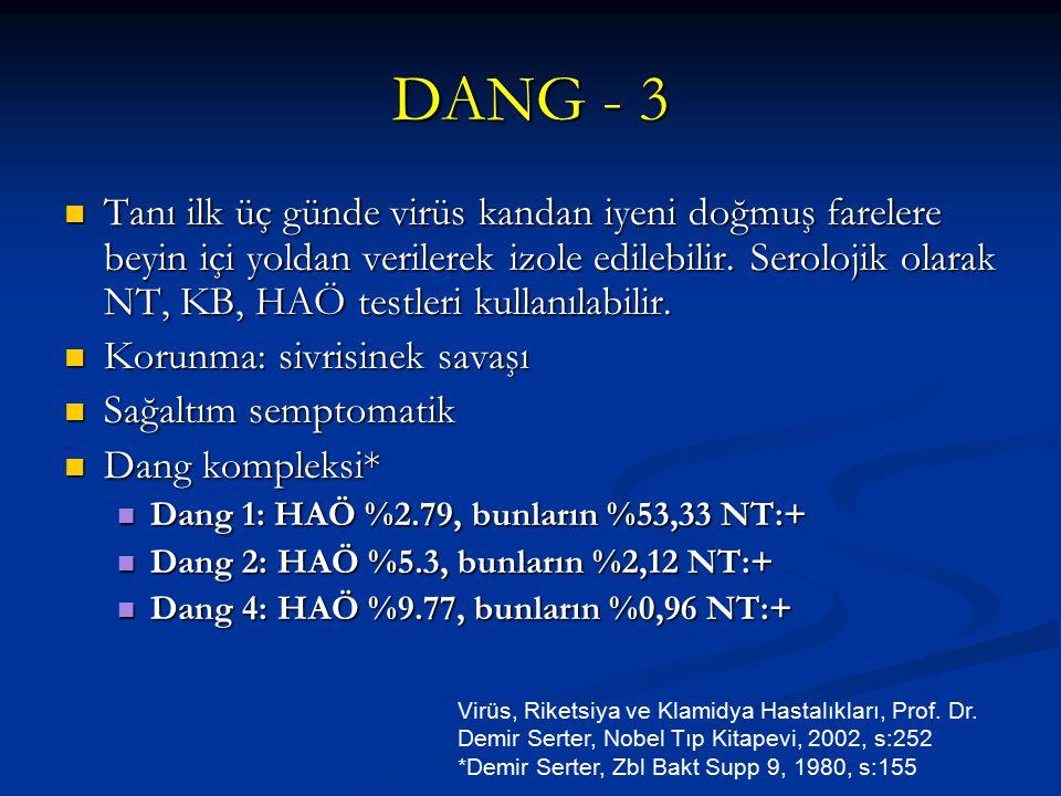 DANG - 3