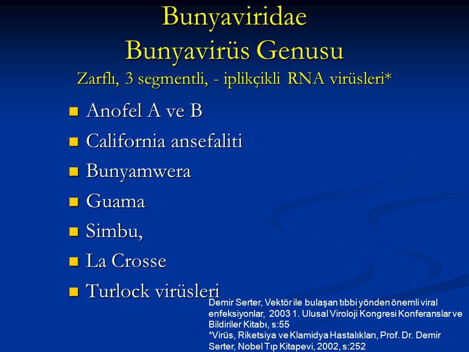 Bunyaviridae Bunyavirüs Genusu Zarflı, 3 segmentli, - iplikçikli RNA virüsleri*
