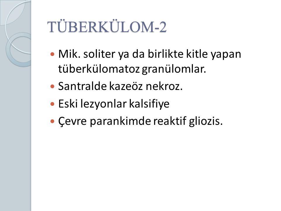 TÜBERKÜLOM-2 Mik. soliter ya da birlikte kitle yapan tüberkülomatoz granülomlar. Santralde kazeöz nekroz.